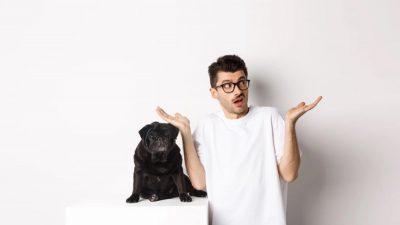 Meu cachorro pode usar shampoo de gente?
